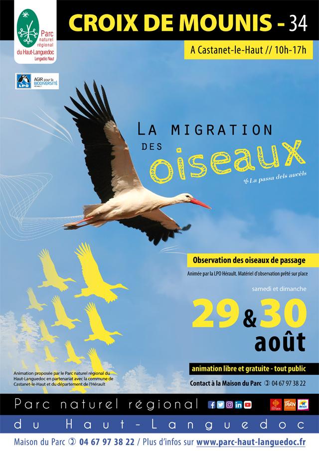 """Affiche de """"L'Observation de la migration des oiseaux"""" les 29 et 30 août 2020 à La Croix de Mounis, Castanet-le-Haut (Hérault)"""