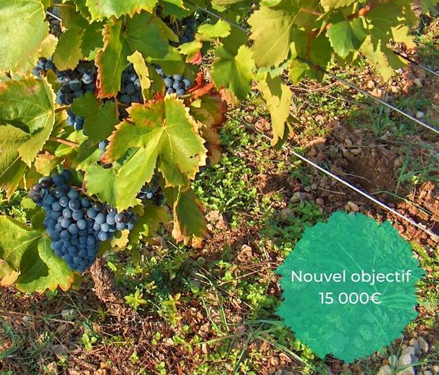 Vignette Financement participatif d'un projet d'agriculture biologique dans le Pnr Haut-Languedoc