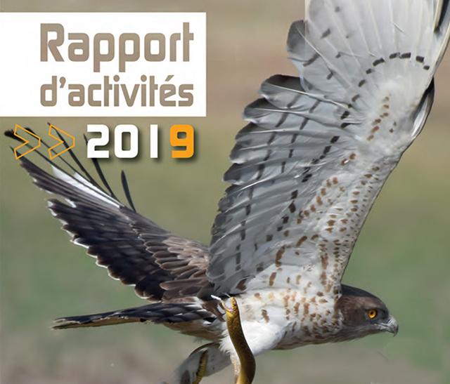 Photo rapport d'activité du Parc 2019 - publié par le Parc naturel régional du Haut-Languedoc