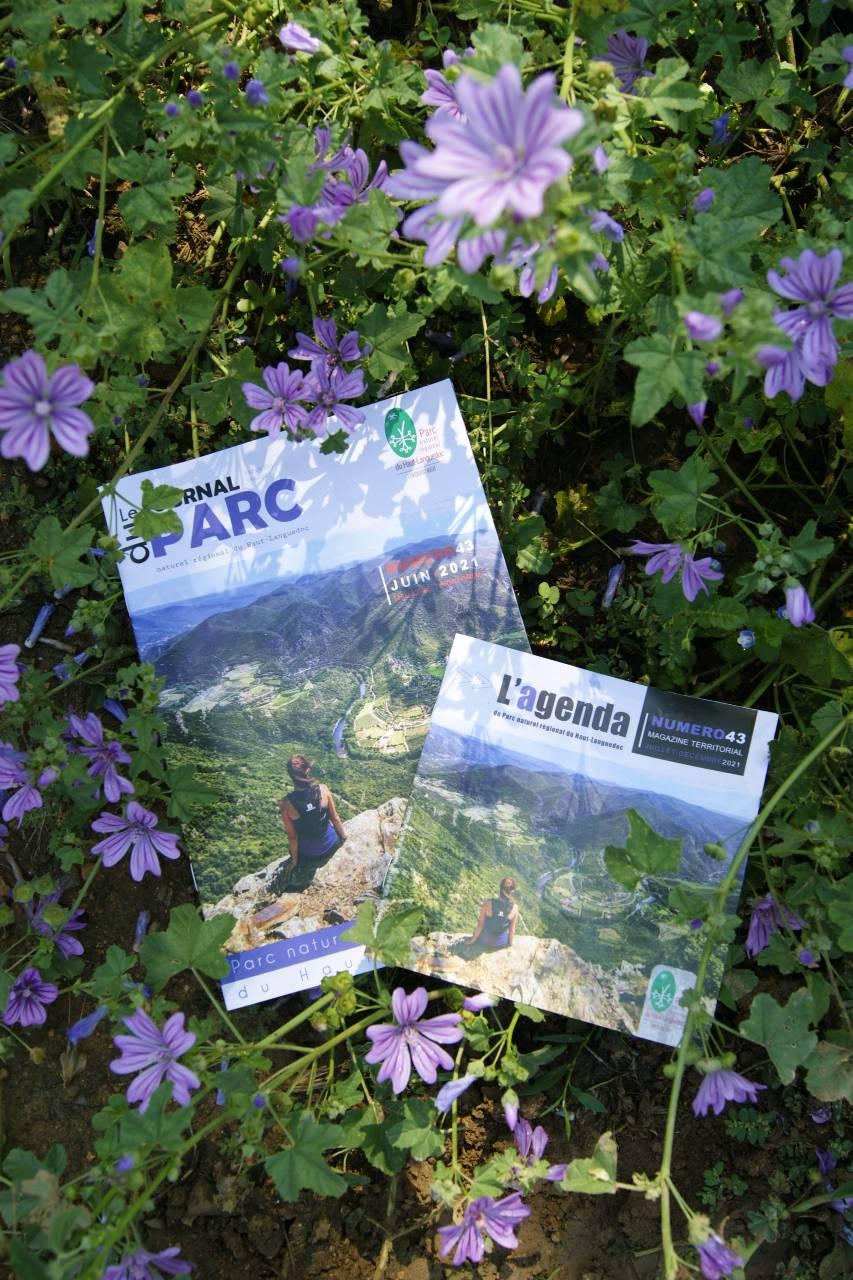 Journal et agenda du Parc 2021
