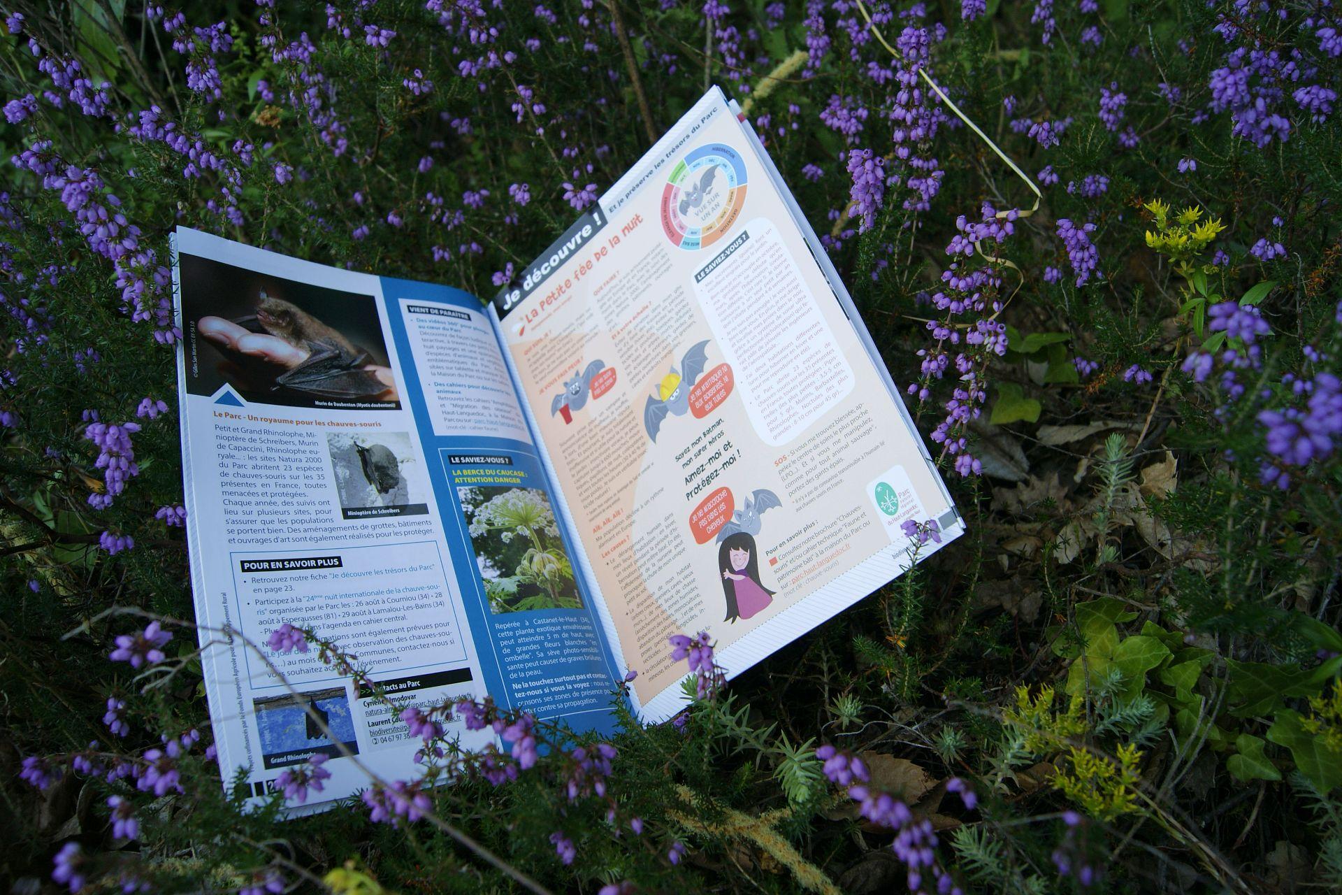 Journal du Parc naturel régional du Haut-Languedoc - Je découvre les trésors du Parc