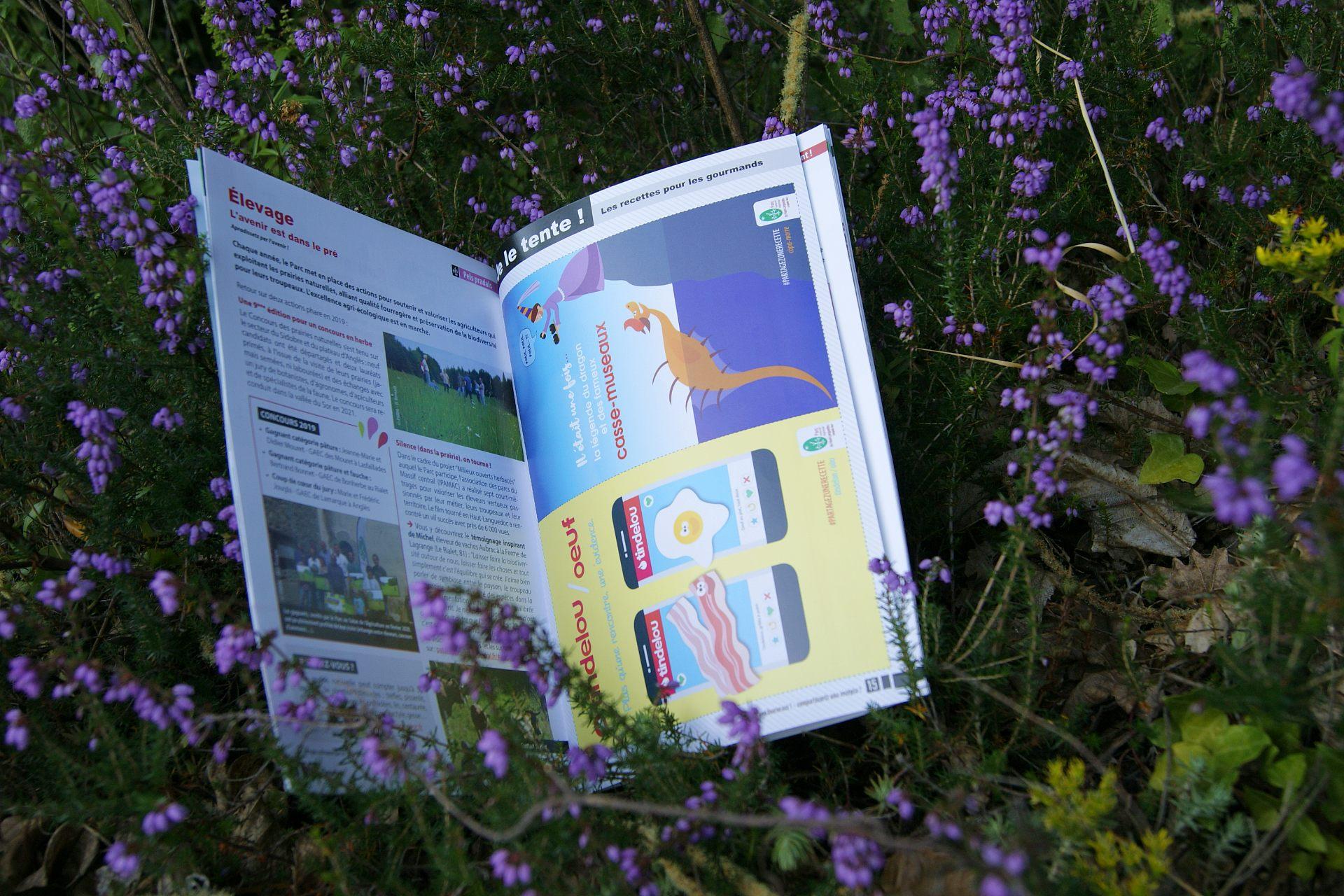 Journal du Parc naturel régional du Haut-Languedoc - Idées recettes
