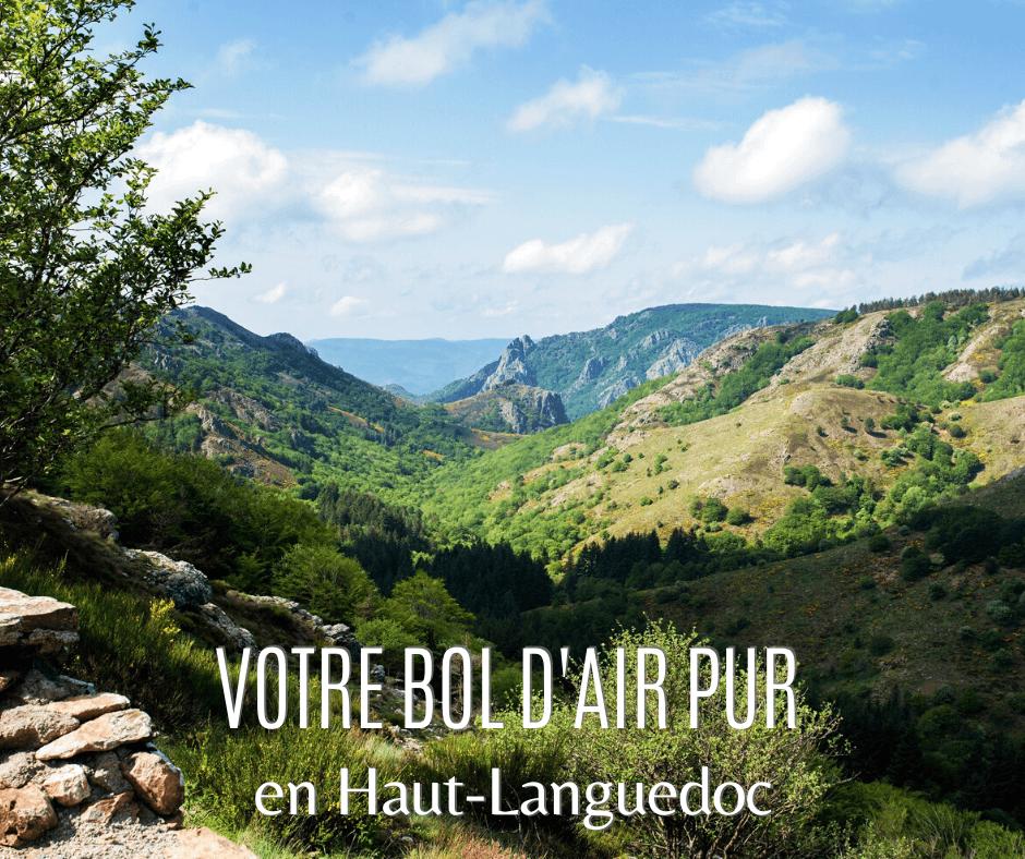 Paysage du Parc naturel du Haut Languedoc LD