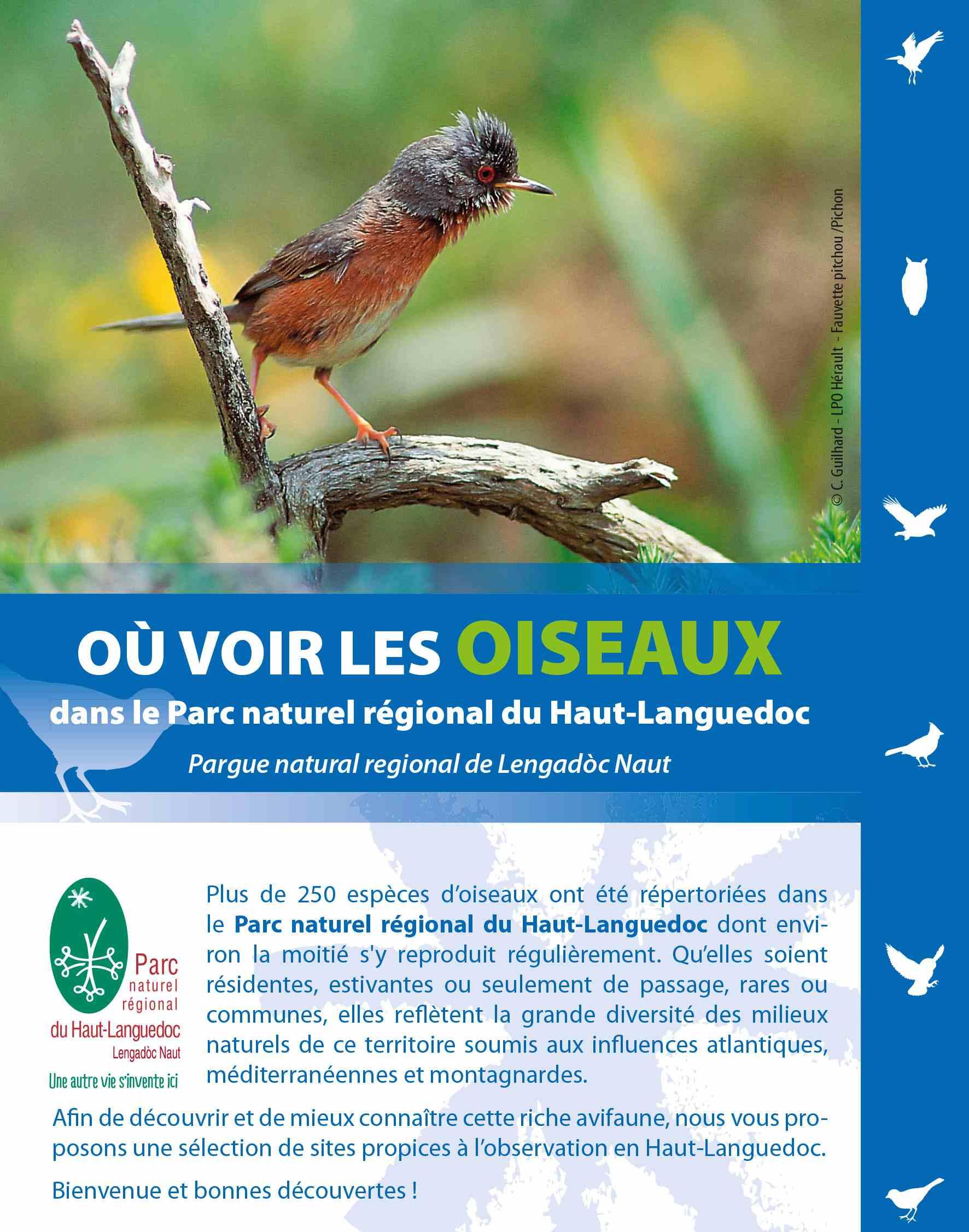 Guide Ou voir les oiseaux du Parc naturel régional du Haut-Languedoc
