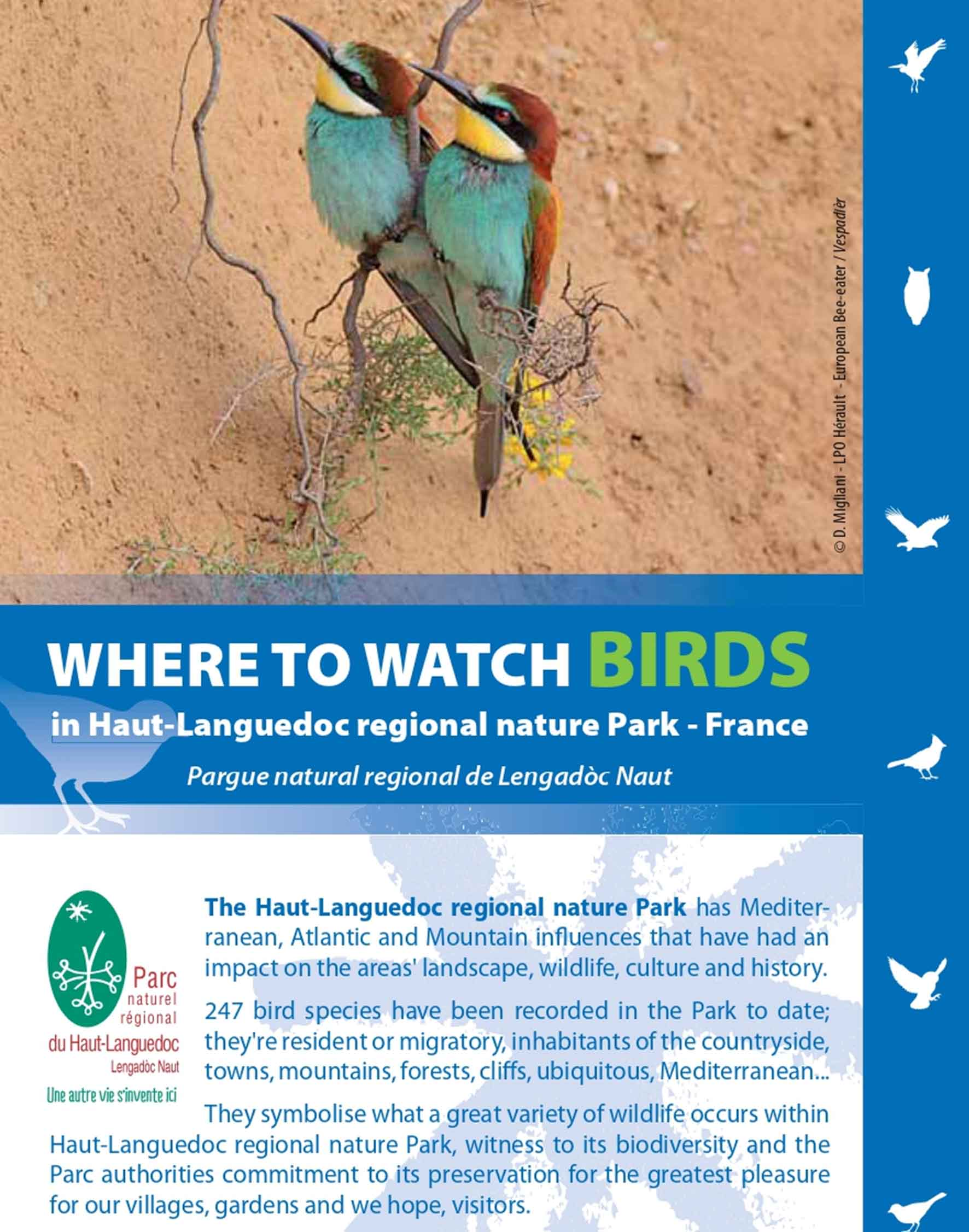 """Where to watch birds in the Haut-Languedoc Regional nature park"" guide"