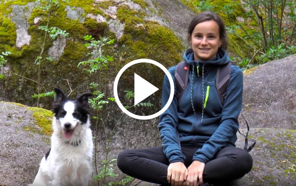 Le Parc du Haut Languedoc en LSF YouTube