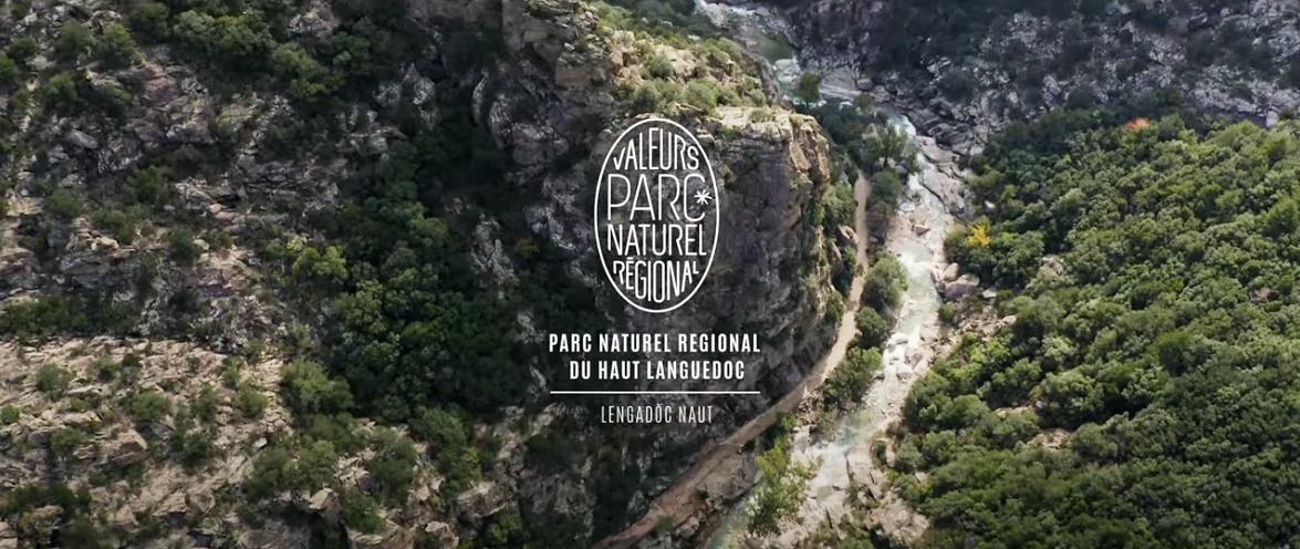 Agir pour la nature avec les Valeurs Parc naturel régional du Haut Languedoc