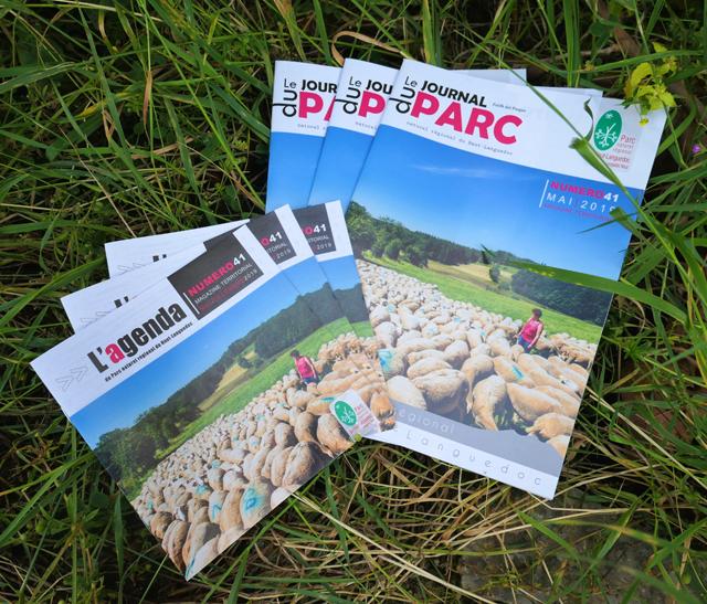 Vignette Photo du Journal et Agenda du Parc 2019 - édition 41- publié par le Pnr Haut-Languedoc