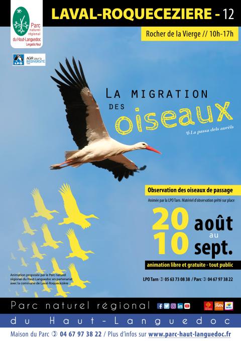 """Affiche de """"L'Observation de la migration des oiseaux"""" du 20 août au 10 septembre 2021 à Laval-Roquecezière (Aveyron)"""