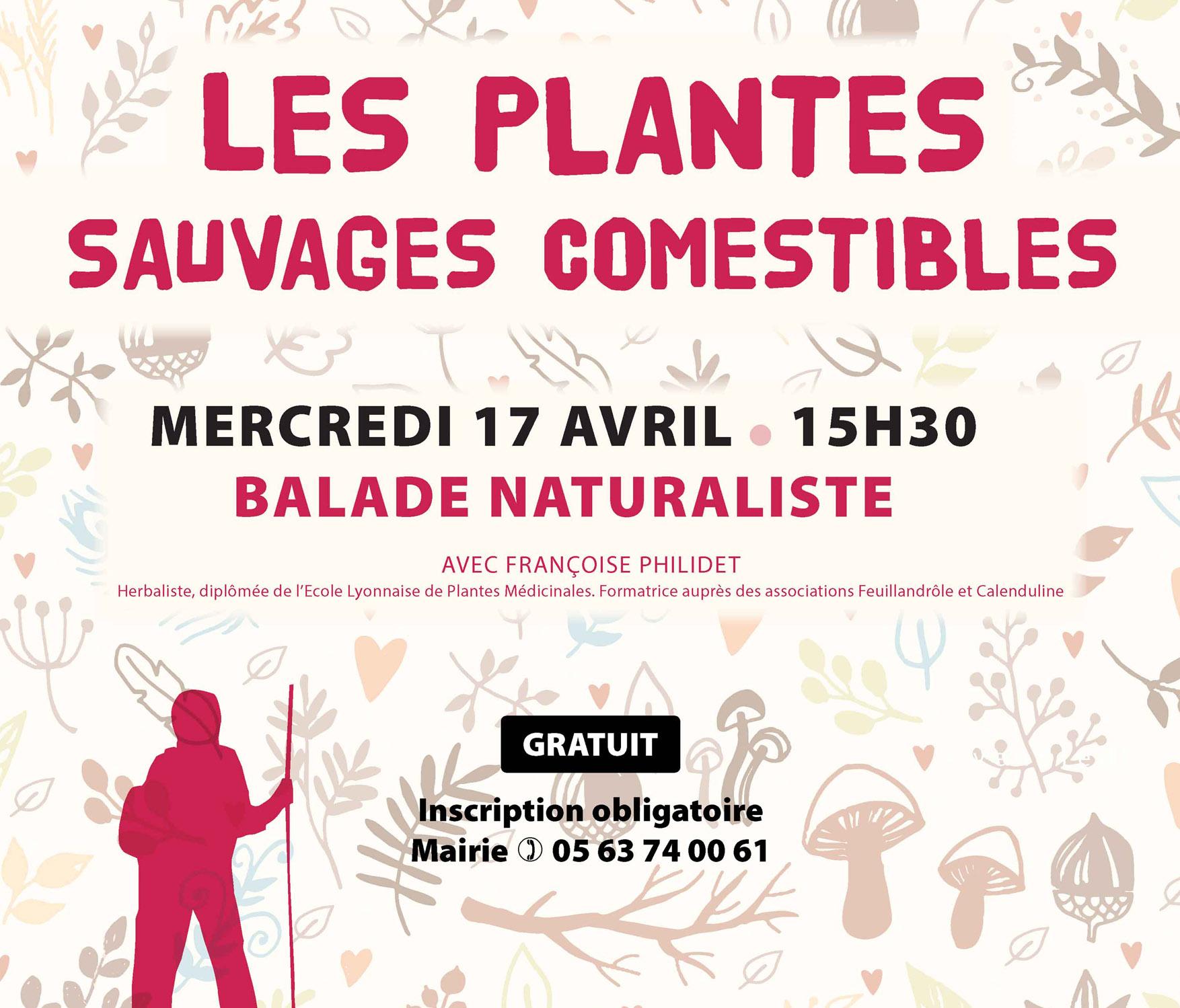 Vignette Balade naturaliste plantes sauvages comestibles à Biot (81) organisée par le Pnr Haut-Languedoc
