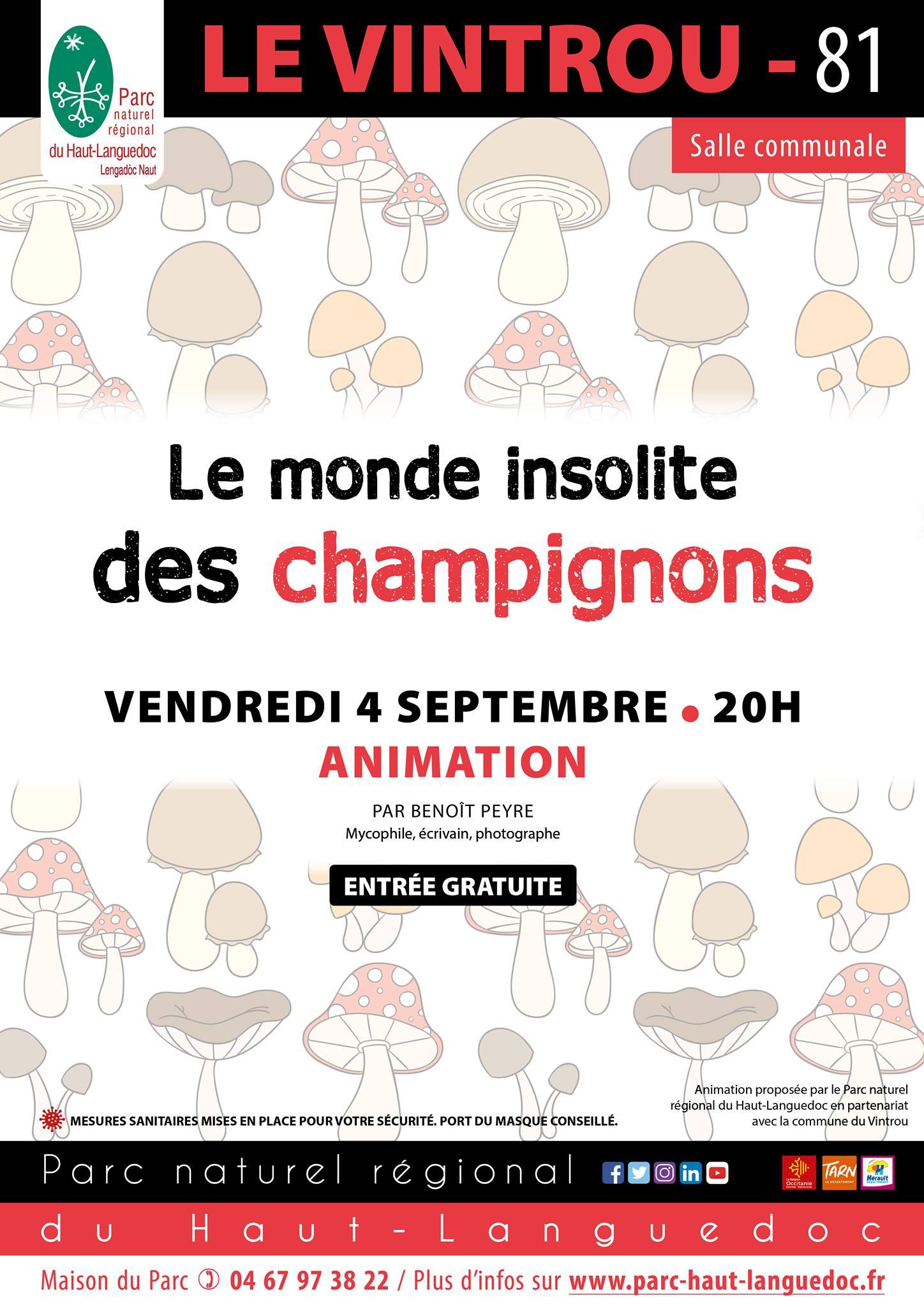 Animation Le Monde Insolite des champignons