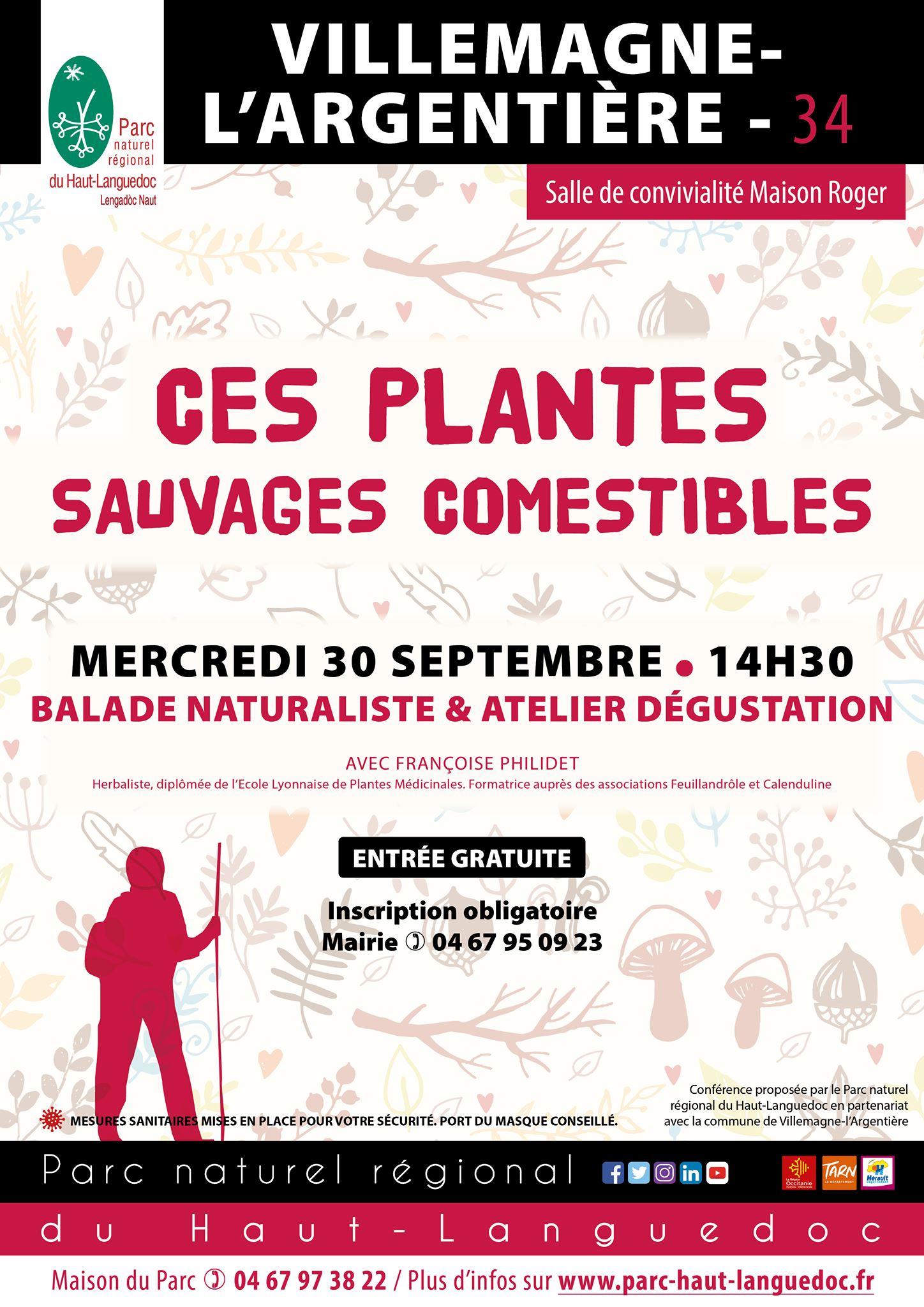 """Affiche Balade naturaliste """"Ces plantes sauvages comestibles"""""""