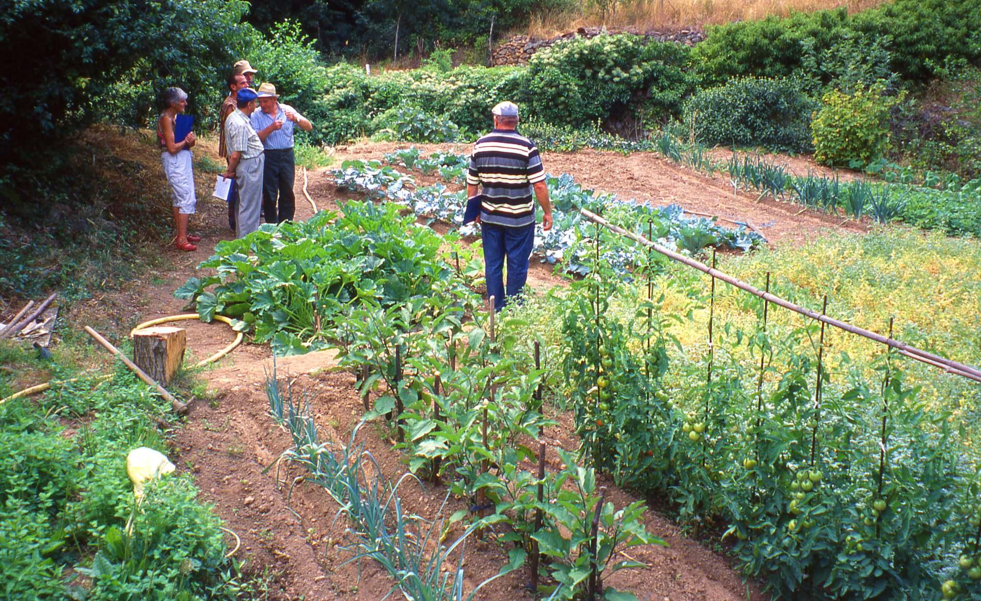 Photo de Jardin durable avec les jardiniers du parc naturel régional du Haut-Languedoc