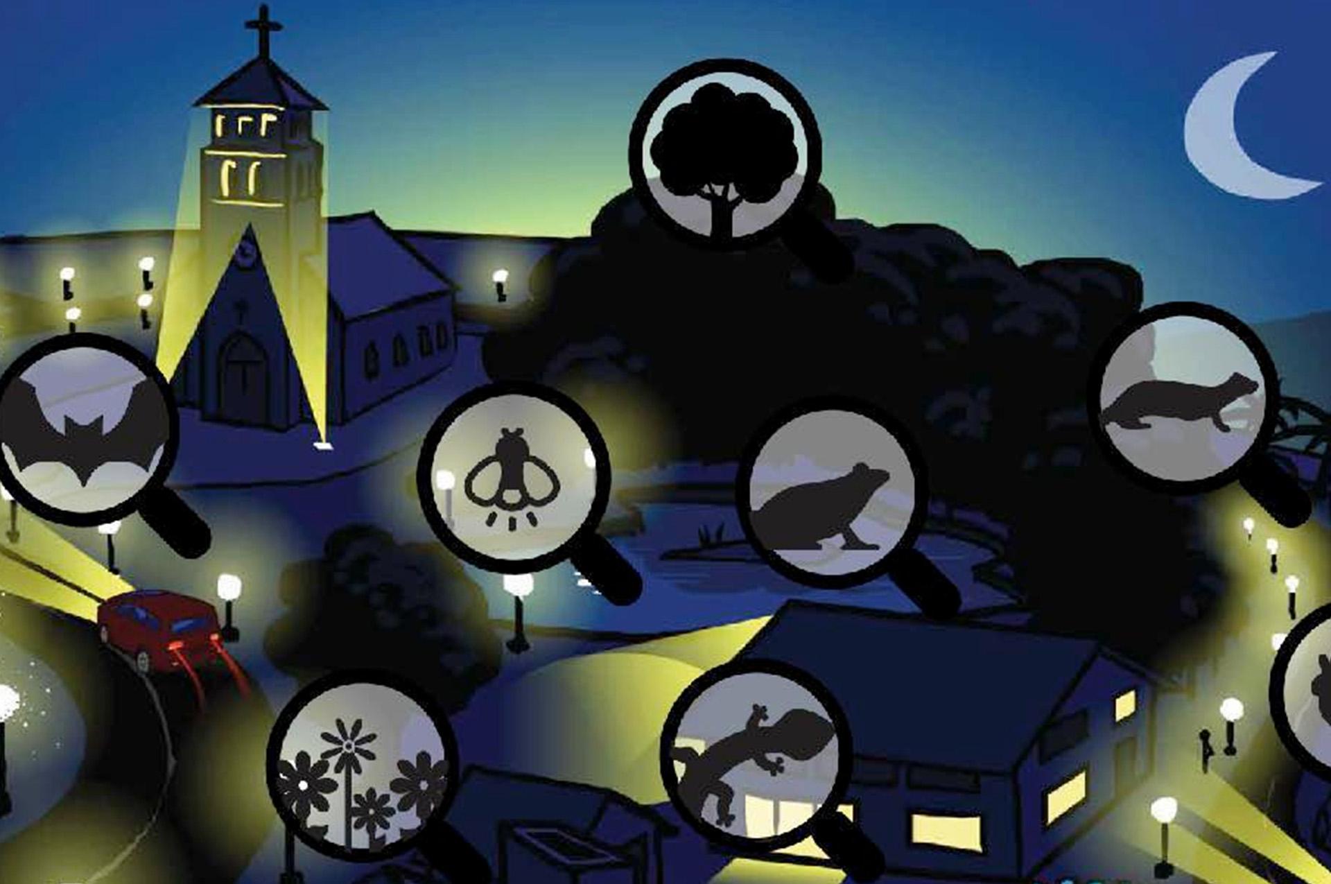 Pollution lumineuse et trame noire
