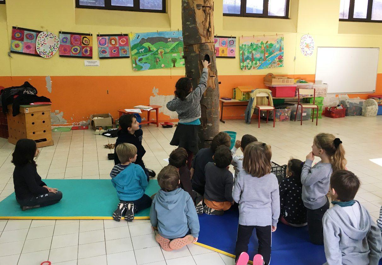 Animation_scolaire_dans_école_de_zone_Natura_2000_du Parc naturel régional du Haut-Languedoc